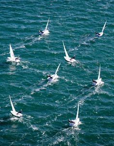espírito de regata. o vento está muitíssimo constante!