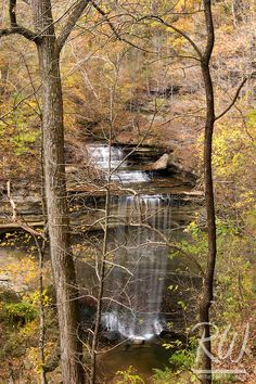 Big Clifty Falls and Fall Foliage, Clifty Falls State Park, Madison, Indiana│RWong Photography