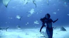 Alucinante vídeo de una modelo australiana bailando con tiburones