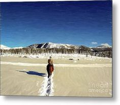 Solitude Metal Print by Bill And Deb Hayes