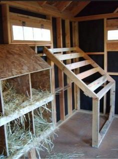Chicken Coop - If I make 1 stall the coop, put a window way up instead of on the ground put a ramp out into Dakotas old turn out. Building a chicken coop does not have to be tricky nor does it have to set you back a ton of scratch. Backyard Chicken Coops, Chicken Coop Plans, Building A Chicken Coop, Diy Chicken Coop, Backyard Farming, Chickens Backyard, Chicken Coup, Simple Chicken Coop, Chicken Ladder
