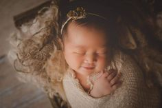 """""""Wattle"""" Dried foliage photography photo prop newborn baby halo tieback with preserved plant foliage detail"""