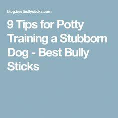 9 Tips for Potty Training a Stubborn Dog - Best Bully Sticks Teach Dog To Come, Teach Dog Tricks, Puppy Potty Training Tips, Toddler Potty Training, Bully Sticks, Dog Hacks, Train Hard, Bullying, Teaching