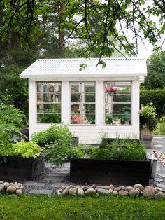 Backyard Greenhouse, Greenhouse Ideas, My Secret Garden, Raised Beds, Outdoor Gardens, Garden Design, Bloom, Patio, Greenhouses