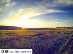 Buenos días zascandiles!  #zascandileandoporcuenca  @van_der_sanchez