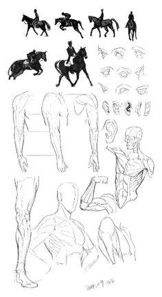근육 Body Tutorial, Anatomy Tutorial, Body Reference, Anatomy Reference, Human Anatomy, Drawing Tips, My Arts, Poses, Photo And Video