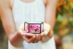 Glazen doos van de Ring Ring aan toonder vak trouwring vak door Waen