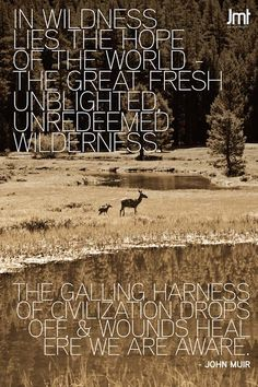 John Muir Quote with image from JMT