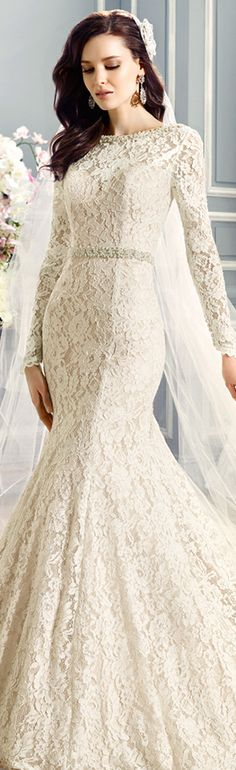 moonlight couture bridal fall 2016 long sleeve alencon lace gorgeous mermaid wedding dress swarovski crystal pearl bateau neckline sash #mermaidweddingdress #2015weddingdresses