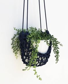 Plant Decor, Wall Decor for Plants, Modern Macrame Wall Hanging, Vertical Plant Holder, Apartment Decor, Hanging Planter, Succulents Holder by knitknotsupplyco on Etsy https://www.etsy.com/listing/542732935/plant-decor-wall-decor-for-plants-modern