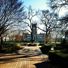 I honestly forgot how beautiful this place can be. Fordham University, How Beautiful, Sidewalk, College, Canning, School, Places, University, Side Walkway