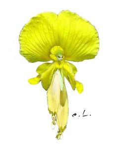 zSpdrwk_sprite_Yellow.jpg (600×750) ||