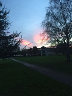 Came from college and saw this beautiful sunset ! What a beautiful sky !