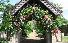 A very lovely floral arch Floral Arch, Floral Wreath, Very Lovely, Beautiful, Rose Wall, Church Flowers, Bridal Flowers, Rose Flowers, Civil Ceremony