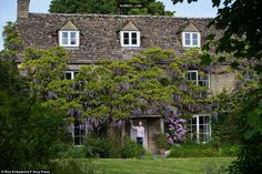 這間本來看起來像廢墟的房子因為在43年前種下了一株紫藤花,讓它在今天變成美得讓人窒息的紫藤屋! - boMb01