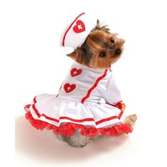 Cutie Nurse Dog Costume Size: Large L) - - Size: Large L) Features: -Dog costume.-Two piece cutie nurse dog costume.-Red heart prints on dress and hat. Cute Dog Costumes, Puppy Costume, Pet Halloween Costumes, Nurse Costume, Dog Halloween, Halloween Tricks, Animal Costumes, Halloween Dress, Happy Halloween