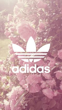 Find images and videos about flowers, wallpaper and adidas on We Heart It - the app to get lost in what you love. Adidas Backgrounds, Cute Wallpaper Backgrounds, Tumblr Wallpaper, Pink Wallpaper, Wallpaper Downloads, Cute Wallpapers, Pattern Wallpaper, Adidas Iphone Wallpaper, Iphone Background Wallpaper