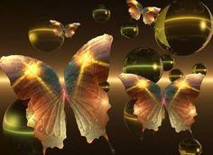 imagem de borboletas para facebook - Pesquisa Google