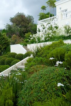 A once steeply sloping site overlooking False Bay and the Hottentots Holland Mountains has been transformed into a manicured, terraced garden that makes as much Garden Types, Contemporary Garden, Public Garden, White Gardens, Terrace Garden, South Africa, Holland, Outdoor Living, Sidewalk