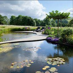 Ландшафтный дизайн / Landscape Review | VK