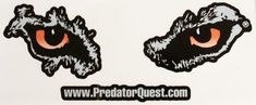 11in PQ Decal Coyote Hunting, Hard Hats, Predator, Decals, Tags, Helmets, Sticker, Decal
