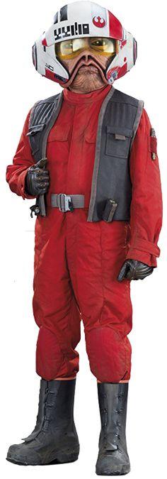 Nien Nunb, Sullustan smuggler and pilot for the Rebel Alliance and the Resistance.