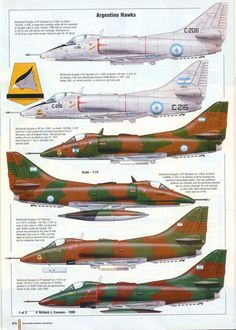 Fighter Aircraft, Fighter Jets, Playmate Gallery, Douglas Aircraft, Falklands War, Aircraft Painting, Jet Engine, Aircraft Design, Nose Art