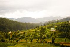 Nothing can beat the beauty of Nilgiri Hill Station.