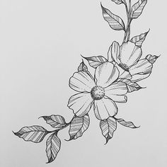 Floral - flower drawing, black and white illustration | Flower, A ...