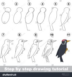 Kid game to develop drawing skill with easy gaming level for preschool kids, drawing educational tutorial for Woodpecker Bird