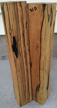 Spalted Maple Wood Is Which Has Dark Streaks In It Ca By Bugs Or Mold That Gotten Into A Weakened Section Sometime The