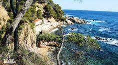 Cala del Crit y Font Morisca - Palamós http://ift.tt/1Yl8ws6 #costabrava #redcostabrava #palamos #nature #naturaleza #beach #viaje #mar #playa #girona #emporda #catalunyaexperience #catalunyafotos  #sun_and_beach_sb #bestplacestogo #mediterranean  #mediterraneo  #travel #traveling #picoftheday #fotodeldia #КостaБрава  info http://ift.tt/1EOM95f