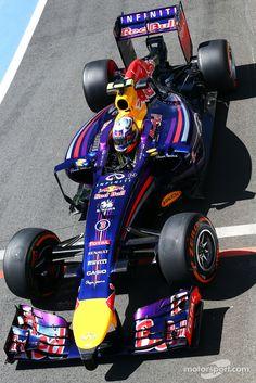 2014 Daniel Ricciardo, Red Bull Racing RB10 - Position 3rd - Points 238 #britairtrans #f1