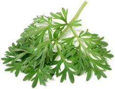 This blend of #herbs is proved effective against #depression and #anxiety, #British scientists reveal.