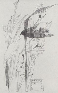 Plant Study ▫ Iris Seed / Walberswick by Charles Rennie Mackintosh (CRM) in collaboration with Margaret Macdonald Mackintosh (MMM) ▫ 1915 ▫ Currently untraced Charles Rennie Mackintosh, Botanical Drawings, Botanical Art, Botanical Illustration, Illustration Art, Gustav Klimt, Art Aquarelle, Glasgow School Of Art, Artist Sketchbook