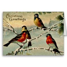 Vintage Birds Christmas Greeting Cards