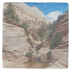 Slick Rock Zion National Park Utah Stone Coaster