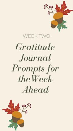 Gratitude Jar, Gratitude Journal Prompts, Gratitude Quotes, Thanksgiving Quotes, Daily Affirmations, Thank You Gifts, How To Start A Blog, Thoughts, Recorded History