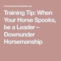 Training Tip: When Your Horse Spooks, be a Leader – Downunder Horsemanship