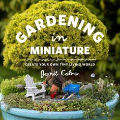 These step-by-step instructions show how to create a fairy garden with tips for choosing a theme and getting started. Make a delightful little world for display on your patio table using natural materials, plants, and miniature accessories. Miniature Plants, Miniature Fairy Gardens, Miniature Rooms, Mini Bonsai, Planting Succulents, Succulent Planters, Hanging Planters, Cool Plants, Cactus Plants
