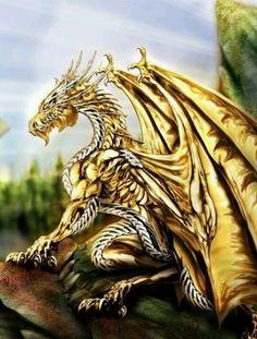 I got: Yellow Dragon! What Dragon are you? Dragon City, Dragon 2, Dragon Slayer, Dragon Fight, Thunder Dragon, Toothless Dragon, Baby Dragon, Magical Creatures, Fantasy Creatures