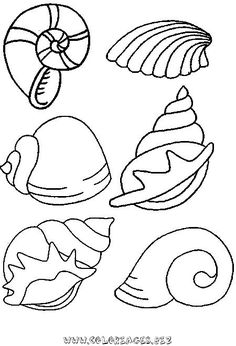 Picture result for crafting with shells templates - Coloring Pages Colouring Pages, Coloring Pages For Kids, Coloring Books, Embroidery Stitches, Embroidery Patterns, Hand Embroidery, Diy And Crafts, Crafts For Kids, Arts And Crafts