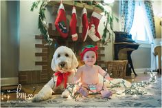 dog, baby, and Christmas lights - adorable Christmas card idea with dog and baby in their home