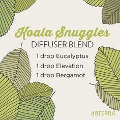 """""""Comforting and refreshing, this is the perfect blend to diffuse when the kids come home from school.  What are your favorite Eucalyptus diffuser blends?…"""""""