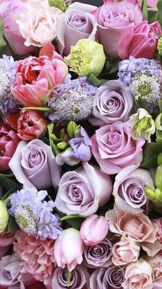 Flower Iphone Wallpaper, Rose Gold Wallpaper, Flower Backgrounds, Beautiful Flowers Wallpapers, Most Beautiful Flowers, Pretty Flowers, Fresh Flowers, Beautiful Flower Arrangements, Floral Arrangements