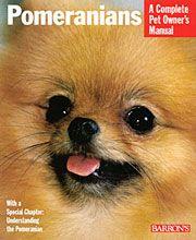 Love Pomeranians!