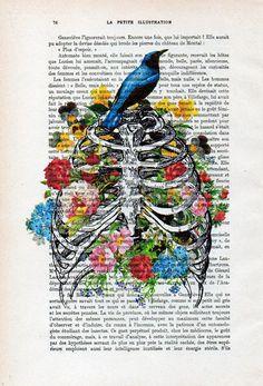 Regalo de caja torácica impresión flor pájaro arte ilustración