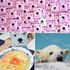 ราเม็งน้องหมี! ไม่ได้มีดีแค่น่ารัก นำเงินช่วยสวนสัตว์ในซัปโปโร