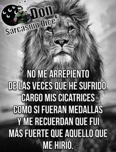 day memes in spanish Spanish Memes, Spanish Quotes, Motivational Phrases, Inspirational Quotes, Broken Heart Images, Lion Quotes, Life Values, Funny Emoji, Simple Quotes