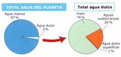 porcentaje de agua - Buscar con Google